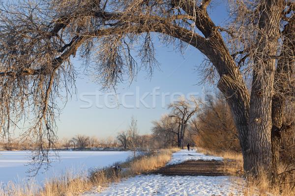 winter trail Stock photo © PixelsAway