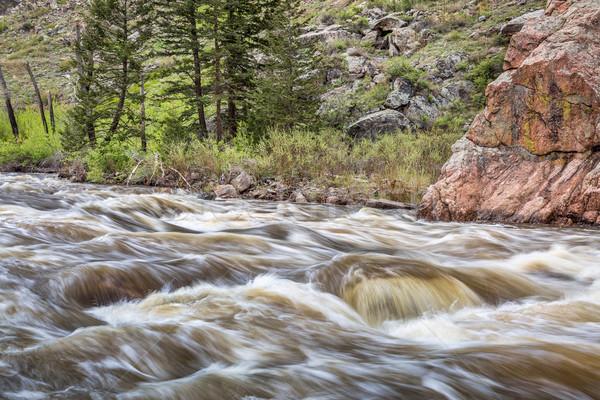 mountain river rapid in springtime Stock photo © PixelsAway