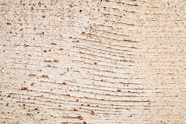 Grunge beyaz boyalı ahır ahşap doku doku Stok fotoğraf © PixelsAway