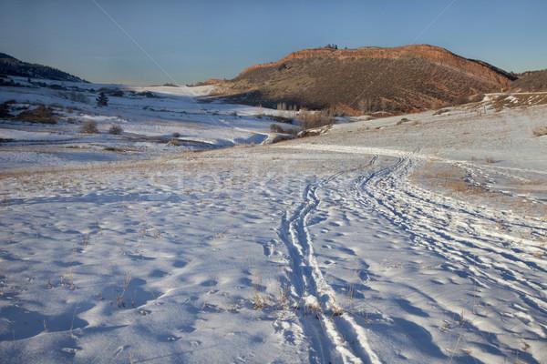 winter trail in Colorado Rocky Mountains Stock photo © PixelsAway