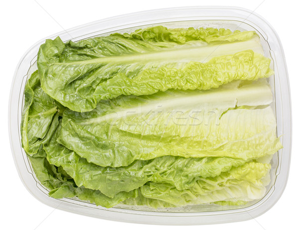 romaine heart leaves Stock photo © PixelsAway