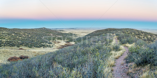 singletrack bike trail and rolling prairie Stock photo © PixelsAway
