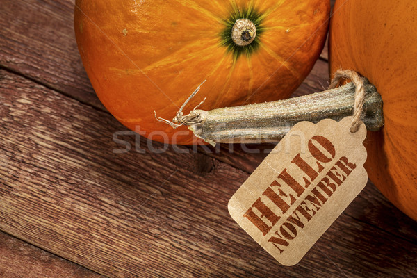 pumpkin with Hello November tag Stock photo © PixelsAway