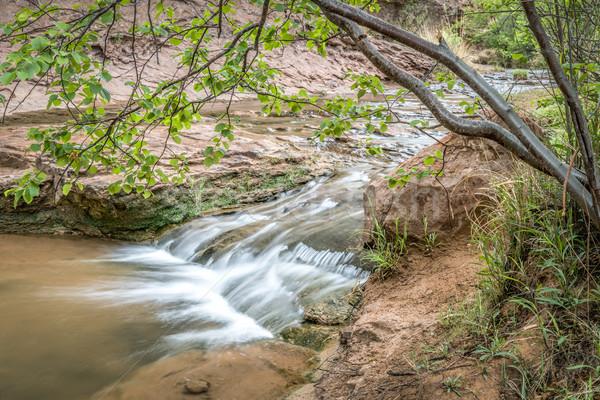 小川 砂岩 峡谷 法案 春 風景 ストックフォト © PixelsAway