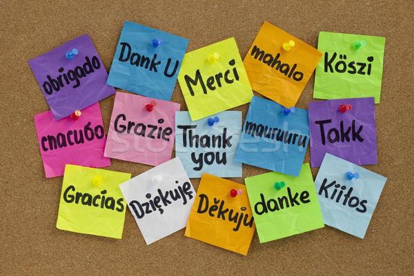 Merci différent langues seize coloré sticky notes Photo stock © PixelsAway