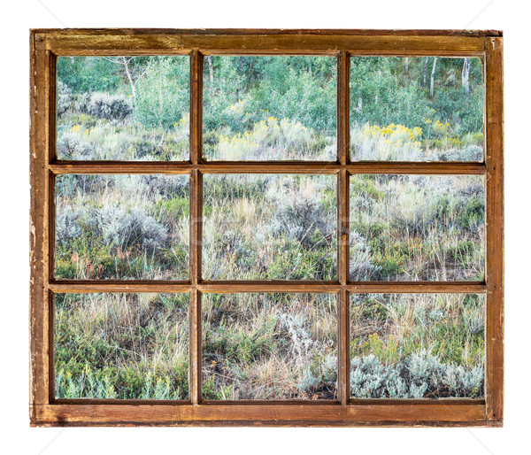 Colorado mountain tapestry window view Stock photo © PixelsAway