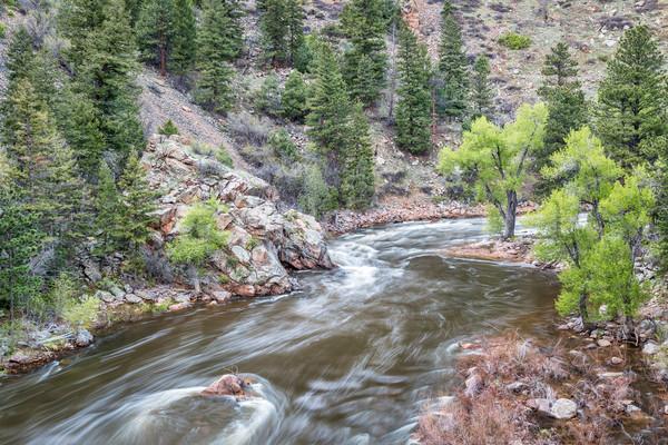 Cache la Poudre River in Rocky Mountains Stock photo © PixelsAway