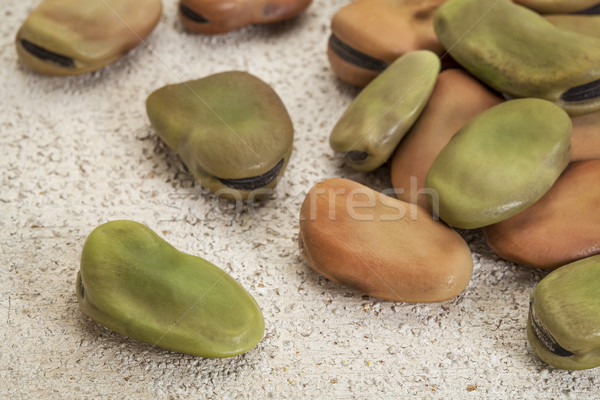 fava (broad) beans Stock photo © PixelsAway
