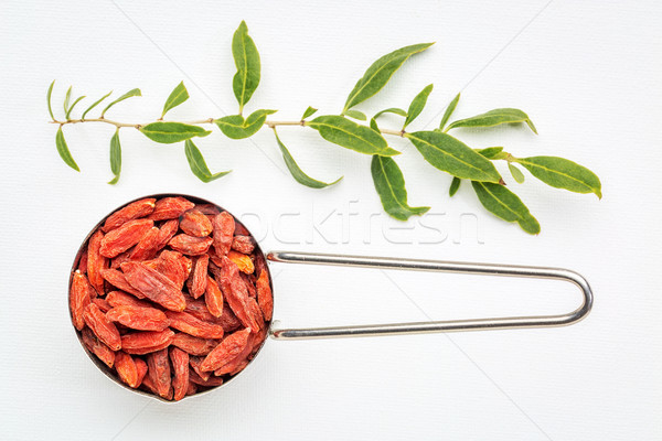 goji berries in measuring scoop Stock photo © PixelsAway
