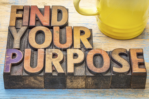 FInd your purpose advice Stock photo © PixelsAway