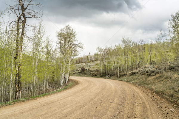 back country road with aspen grove Stock photo © PixelsAway