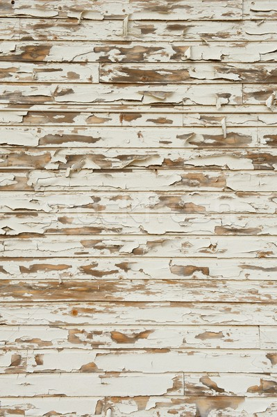 Old Wood with Peeling Antique White Paint Stock photo © pixelsnap