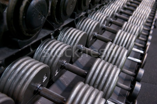 Rack of Dumbbells at a Professional Gym Stock photo © pixelsnap