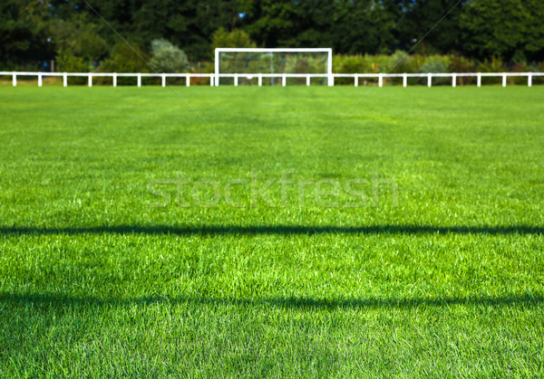 Grassy Field And Goal Post On Sunny Day Stock photo © pixinoo