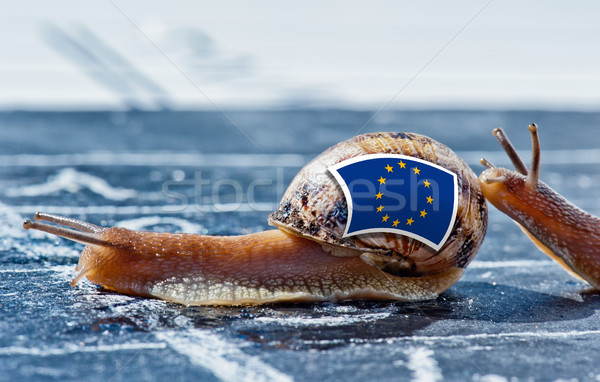 snail with the colors of Europe flag encouraged by another country Stock photo © pixinoo