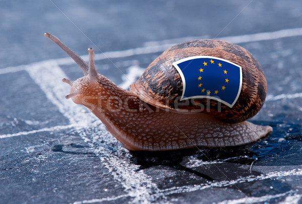 finish line winning of a snail with the colors of Europe flag Stock photo © pixinoo