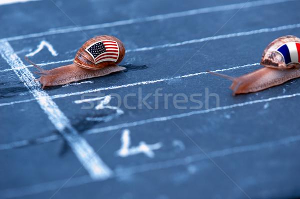 Verseny metafora USA Franciaország felirat zászló Stock fotó © pixinoo