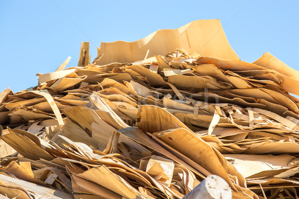Wood chips for a biomass combustion Stock photo © pixinoo