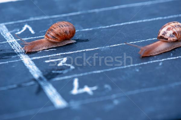 Fini course drôle sport vitesse énergie Photo stock © pixinoo