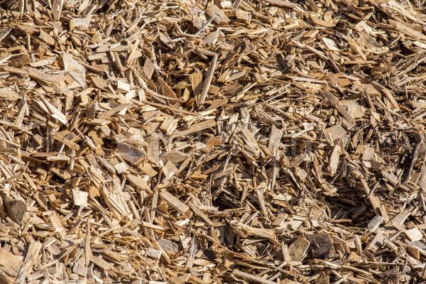 processed wood waste and wood shavings Stock photo © pixinoo