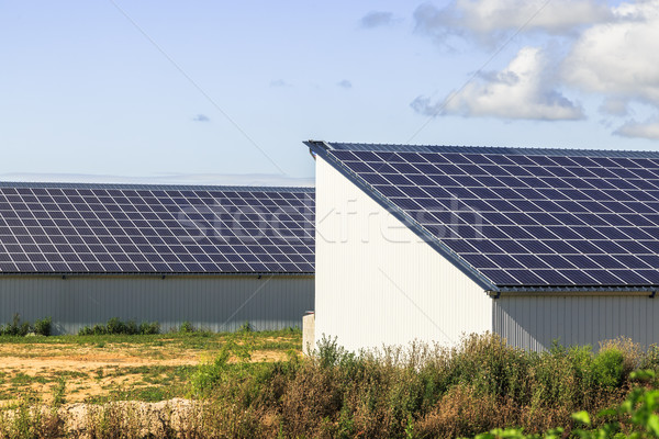 Photovoltaic Solar Panels on agricultural warehouses Stock photo © pixinoo