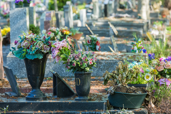 Flowers in a cemetery with tombstones in background Stock photo © pixinoo