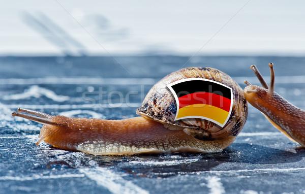 Foto d'archivio: Lumaca · colori · Germania · bandiera · un · altro · paese