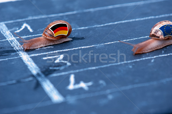 snails race metaphor about Germany against Europe Stock photo © pixinoo