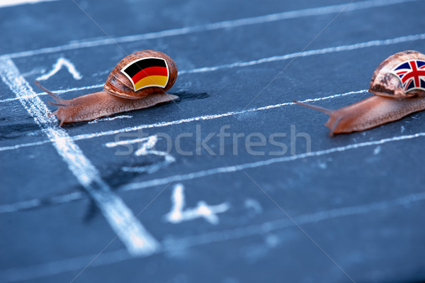 snails race metaphor about Germany against England Stock photo © pixinoo