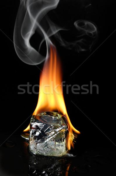 Palenie kostkę lodu palenia kości hot zimno Zdjęcia stock © pixpack