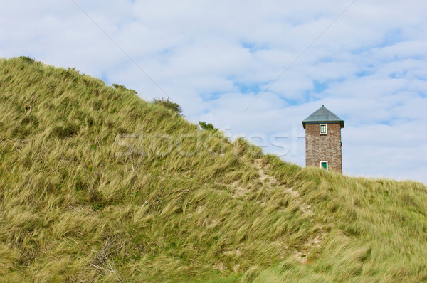 Watchtower in the dunes, the Netherlands Stock photo © pixpack