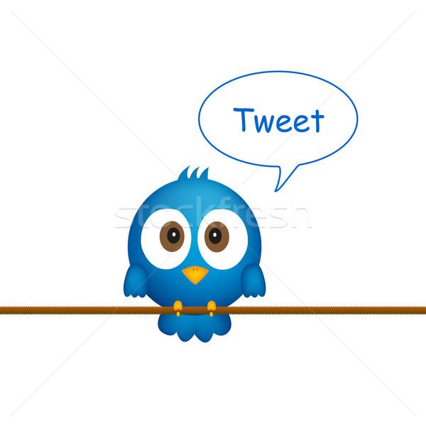 Kék madár ül kötél énekel absztrakt Stock fotó © PiXXart