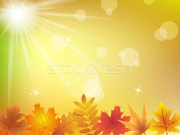 światło słoneczne drzewo słońce streszczenie świetle Zdjęcia stock © PiXXart