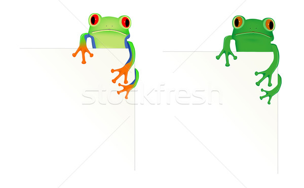 2 frogs in corner of page Stock photo © PiXXart
