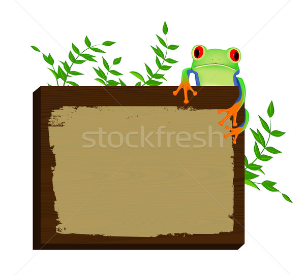 Red eyed tree frog sitting on wood background Stock photo © PiXXart