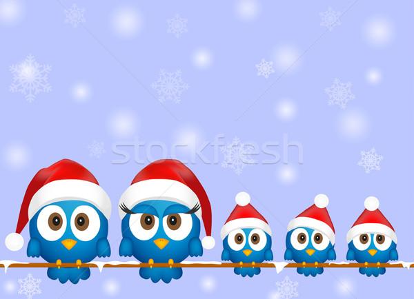 Cute christmas ptaków dzieci lodu ptaków Zdjęcia stock © PiXXart