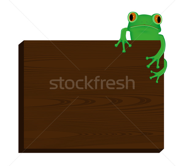 Green tree frog sitting on wood background Stock photo © PiXXart