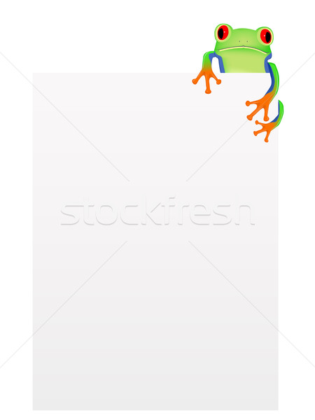 Red eyed tree frog with blank background Stock photo © PiXXart