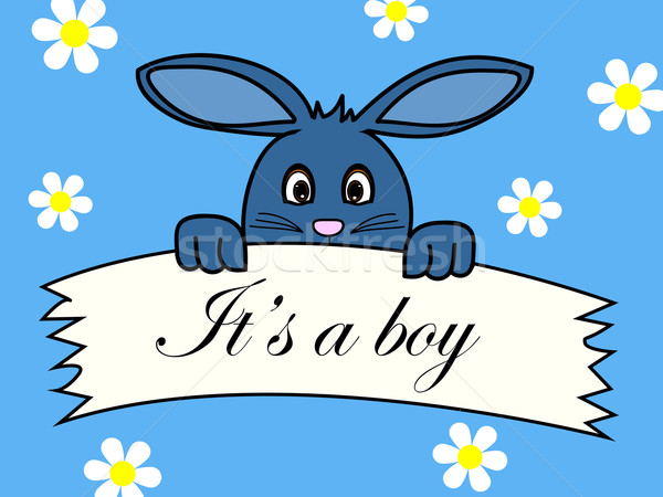 Nascimento anúncio bebê menino flor criança Foto stock © PiXXart