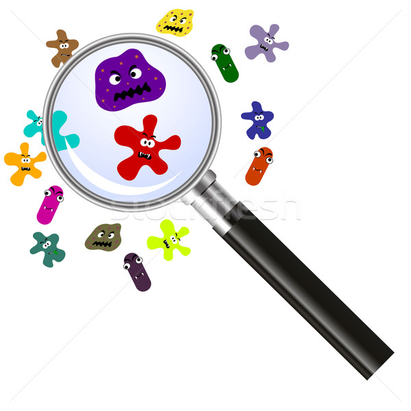 magnifier and germs Stock photo © PiXXart
