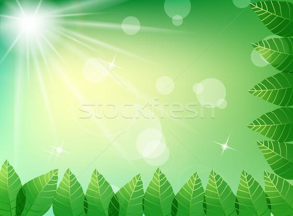 Foglie verdi luce del sole cielo foresta giardino alberi Foto d'archivio © PiXXart