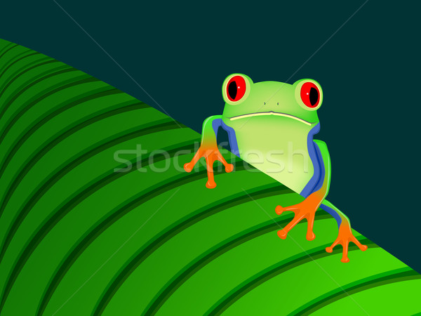 Red eyed tree frog sitting on leaf Stock photo © PiXXart