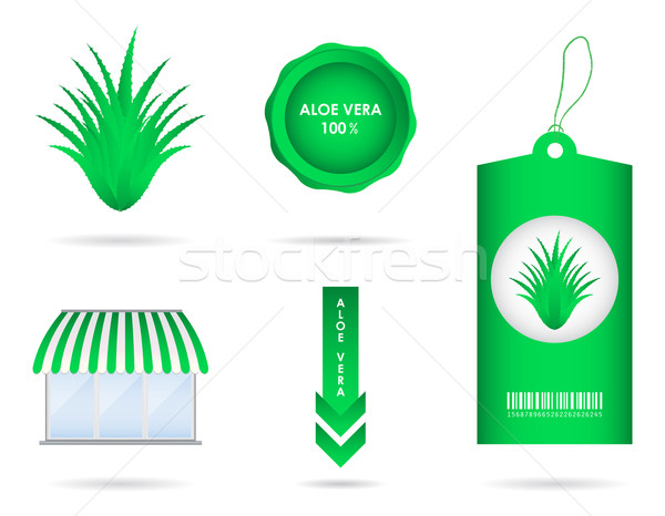 special aloe vera design elements Stock photo © place4design