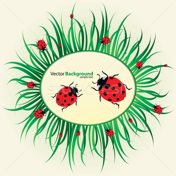 Tavasz természet kert keret felirat zöld Stock fotó © place4design