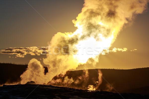 Edad fiel puesta de sol azul oscuro parque Foto stock © pngstudio