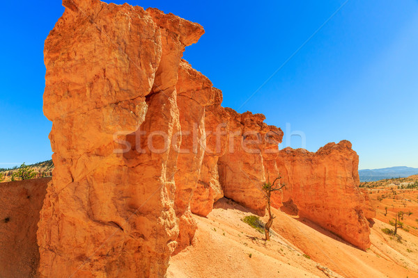 Red Rock Landscape Stock photo © pngstudio