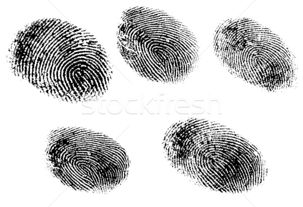 5 fingerprints Stock photo © PokerMan