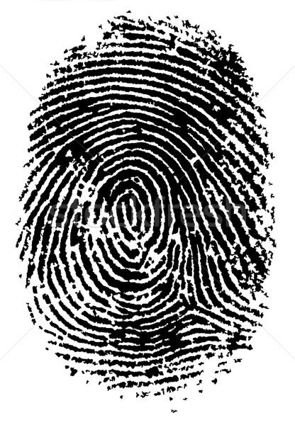 отпечатков пальцев черно белые вектора прозрачный можете другой Сток-фото © PokerMan