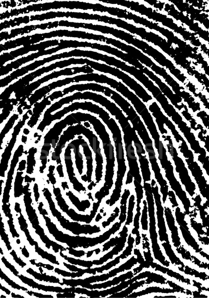 FingerPrint Crop 2 Stock photo © PokerMan