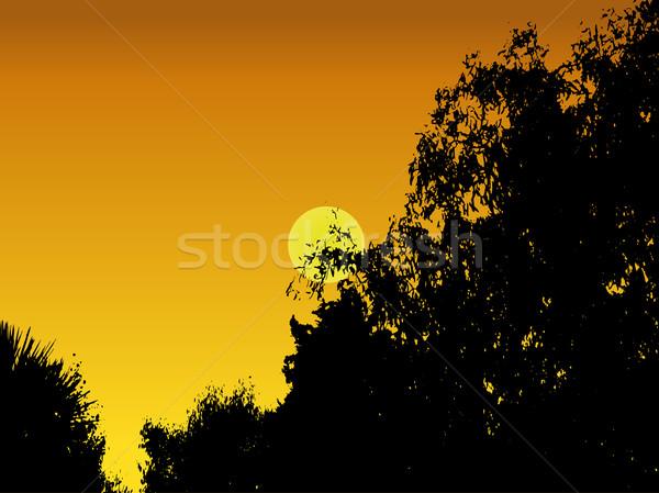 Coucher du soleil illustration soleil vecteur format Photo stock © PokerMan